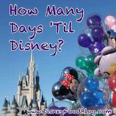 ...till Disneyland