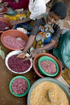 A vendor's display of beans and maize at the Metundu Market in Lilongwe, Malawi. Harvest Market, Vendor Displays, Food Security, Sustainable Food, Dried Fruit, Taste Buds, Granola, Beans, Nutrition
