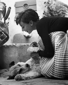 """""""My little dog - a heartbeat at my feet"""". Edith Wharton"""