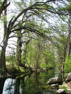 9. Boerne City Park Cibolo Wilderness Trail, 3.5 miles (Boerne)