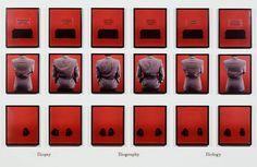 Lorna Simpson Bio, 1992, 18 Polaroid prints, 9 engraved plastic plaques. 98 x 162 inches overall.