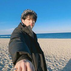 Listen to every Seventeen track @ Iomoio Wonwoo, Seungkwan, Woozi, Jeonghan, Seventeen Album, Hoshi Seventeen, 17 Kpop, Choi Hansol, Babe