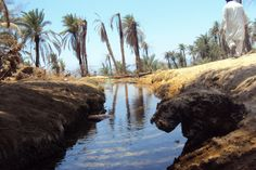 Maqna, Moses Spring, Saudi Arabia known as Meribah: At the waters of Meribah they angered God, and Moses suffered because of them. They so embittered his spirit that rash words crossed his lips -Psalm 106:32-33(NABRE)