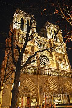 Notre Dame in lights