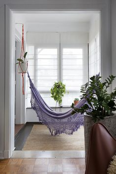 hammock and plant hangers!