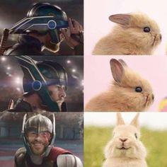 Marvel Jokes, Ms Marvel, Marvel Avengers, Humour Avengers, Funny Marvel Memes, Stupid Funny Memes, Funny Relatable Memes, Funny Avengers, 9gag Funny