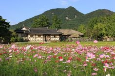Oeam Folk Village (외암민속마을) near Asan Cheonan