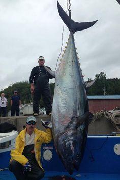 2014 Readers' Top Tuna Photos