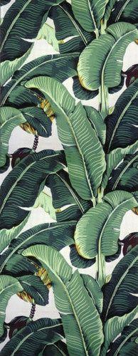 "Martinique ""A"" Wallpaper - tropical - wallpaper - Designer Wallcoverings And Fabrics"