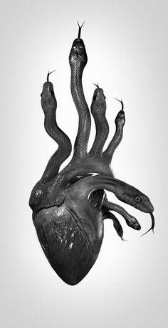 Tech Discover Best Ideas For Illustration Art Dark Woods Inspiration Art Art Inspo Feral Heart Art Noir Arte Obscura Foto Art Black Heart Heart Art My Heart Feral Heart, Art Noir, Arte Obscura, Foto Art, Heart Art, Black Heart, Macabre, Oeuvre D'art, Art Inspo