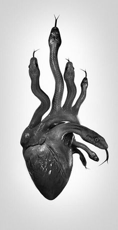 Medusa's venomous heart
