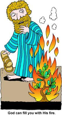 bible bush adult burning Exodus stories