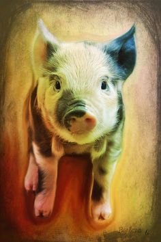 \I am fond of pigs. Dogs look up to us. Cats look down on us. Pigs treat us as equals.\  Winston Churchill --  - Artwork  Barbara Orenya