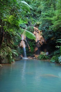 Caldeira Velha hot springs, São Miguel Island, Azores Portugal  Travel to Azores Islands in Portugal to enjoy azores beautiful nature.  --  Have a look at http://www.travelerguides.net