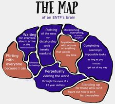 "This struck a cord with me. Especially the 'seeing the world from the point of a 12 year old boy"" creepily accurate. And I'm a 23 year old woman Entp Personality Type, Personality Psychology, Myers Briggs Personality Types, 16 Personalities, Myers Briggs Personalities, Mental Health Journal, Intj Intp, Impatience, Meaningful Quotes"
