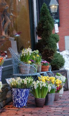 Beacon Hill (Always walked to this florist when in Boston staying at JLL or Andrew