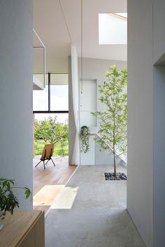 インナーテラスと兼ねたエントランス空間。 専門家:AIRHOUSEが手掛けた、エントランス(柿畑に囲まれた家)の詳細ページ。新築戸建、リフォーム、リノベーションの事例多数、SUVACO(スバコ)