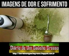 Rio Grande Do Sul, Humor, Drinks, Memes, Food, Grief, Inspiration Quotes, Bedroom Small, Battle