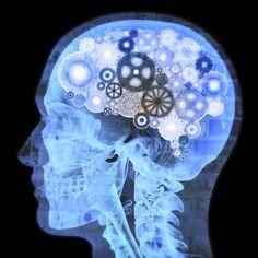 Os encontros passarão por assuntos como programação neurolinguística (PNL), comunicação, oratória, relacionamentos, hipnose, entre outros
