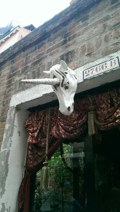 Credi agli unicorni ?