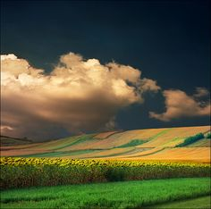 Summer dusk - Katarina Stefanović on Flickr