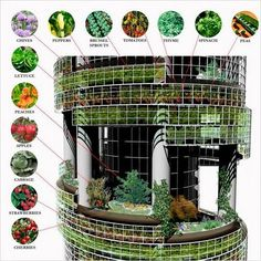 vertical farming concept