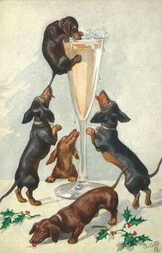 Dachshund Parade Vintage — Vintage Happy New Year Dachshunds postcard on. Vintage Dachshund, Dachshund Art, Vintage Dog, Daschund, Dapple Dachshund, Dachshund Puppies, I Love Dogs, Cute Dogs, Animals And Pets