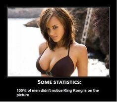 Where's Kong?