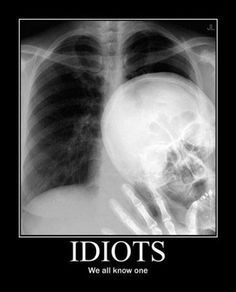 Who's The Idiot?