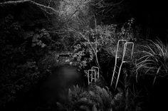 Ross Creek Reservoir - Dunedin - New Zealand Dunedin New Zealand, Documentary Photographers, Street Photography, Documentaries, Mcqueen, Documentary