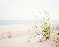 Neutral Beach Photo Set Three 11x14 8x10 by CarolynCochrane