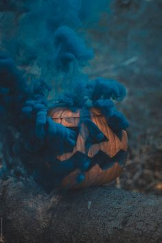 Pumpkin with smoke in the forest by Alberto Bogo - Halloween, Pumpkin - Stocksy. Pumpkin with smoke in the forest by Alberto Bogo - Halloween, Pumpkin - Stocksy. Pumpkin with smoke in the forest by Alberto Bogo - Halloween, Pumpkin - Stocksy United Halloween Tags, Halloween Photos, Halloween Pumpkins, Fall Halloween, Halloween Decorations, Halloween 2019, Halloween Witches, Halloween Halloween, Halloween Season