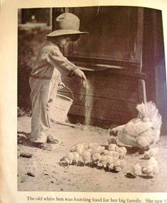 1932 On Our Farm Picture Story Book by John by TheIDconnection, $18.00