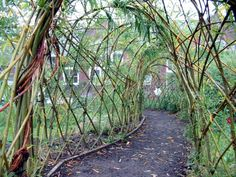 living structures | Willow Garden Structures, Courses & Commissions