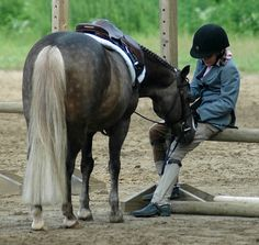 Friendship and Trust ...this reminds me of my girls, horse shows are hard you don't always win, your pony still needs your love....no matter what the judge thinks