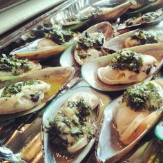 Greenshell mussels with lemon juice and herb sauce 52 weeks of deliciousness/Lily