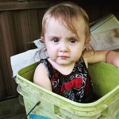 My baby girl #Baylie loves the water so much she climbs into any bucket of water she finds. #adorable #kbphoto #KarmaBloggers #day27 #photochallenge