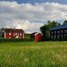 Maalaismaisema Etelä-Pohjanmaalta. Kuortane, Mäyry.