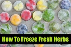 How To Freeze Fresh Herbs (Thanks to Natural Living Ideas for sharing my post on how to freeze Rosemary and Thyme)
