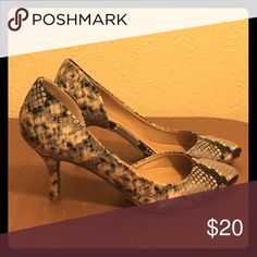 Snakeskin Heels TONIGHT ONLY SALE! 🎄Low heel snakeskin pumps. Only worn once in excellent condition. Shoes Heels