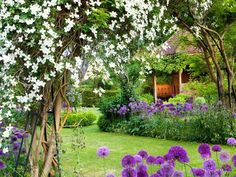 Garden Oasis: Round blue-purple flowers ring this lush lawn and garden oasis. From HGTV.com's Garden Galleries