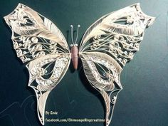 311 best images about QUILLING BORBOLETA on Pinterest