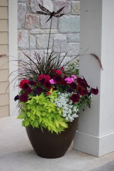 Container Gardening Ideas Over 20 flower planter ideas from my neighborhood! - These are real flower planters Outdoor Flowers, Outdoor Flower Planters, Outside Flower Ideas, Deck Flower Pots, Fall Flower Pots, Diy Flower, Deco Floral, Front Yard Landscaping, Landscaping Ideas