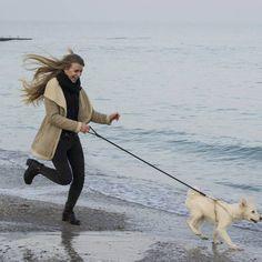 Urlaub mit Hund in Wismar an der Ostsee ab 179 Euro
