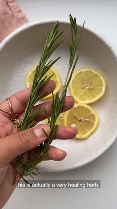 This Sunday, we're hanging out with vegan health and wellness blogger Remy, @veggiekins. In this special edition of Self Care Sunday, she shows us how to do an at-home facial steam to destress 🍵 All Plants, Types Of Plants, House Plants, Facial Steaming, Destress, Self Care Routine, Plant Care, Health And Wellness, Succulents