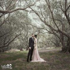 Sul da Austrália Impecável // Flawless South Australian wedding #precasamento #sitedecasamento #bride #groom #wedding #instawedding #engaged #love #casamento #noiva #noivo #noivos #luademel #noivado #casamentotop #vestidodenoiva #penteadodenoiva #madrinhadecasamento #pedidodecasamento #chadelingerie #chadecozinha #aneldenoivado #bridestyle #eudissesim #festadecasamento #voucasar #padrinhos #bridezilla #casamento2016 #casamento2017