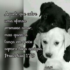 #Provérbios #Sabedoria #Amor #Amizade #Lealdade #AmigosSãoPresentesDeDeus #DeusFiel #rosiigiil