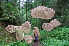 Contemporary Basketry: Willow