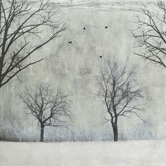In my forest of four... by jamie heiden, via Flickr