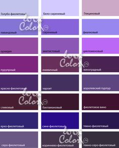 оттенки желтого Colour Pallete, Color Combos, Color Theory, Color Trends, Purple And Black, Love Life, Photo Wall, Palette, Photoshop